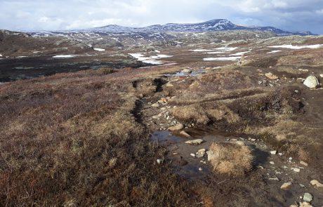 Nordseite des Bitihorns