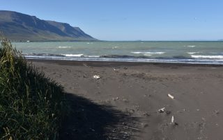 Schwarzer Sand an der isländischen Küste