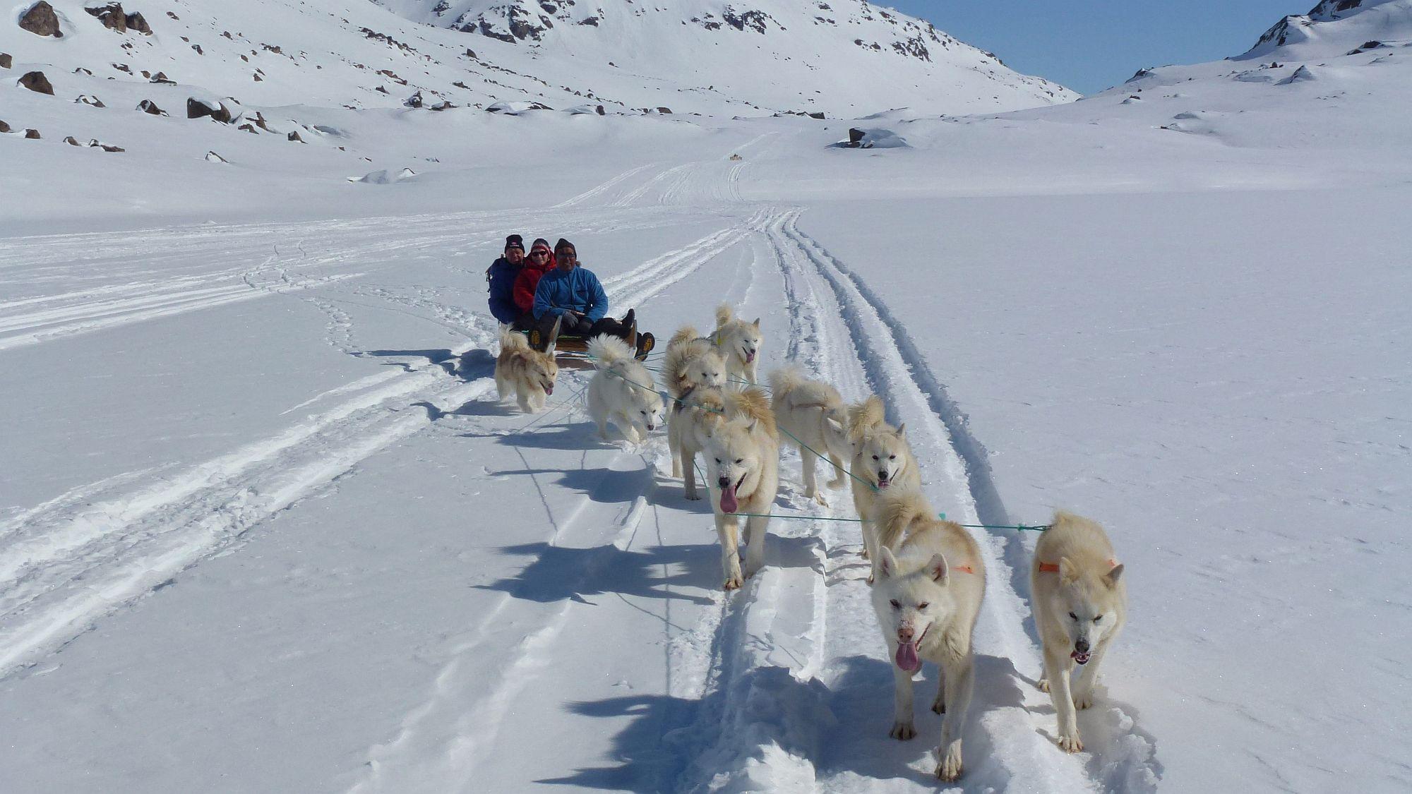Hundeschlittentour in Grönland