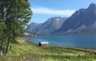 Bauernhof am Fjord