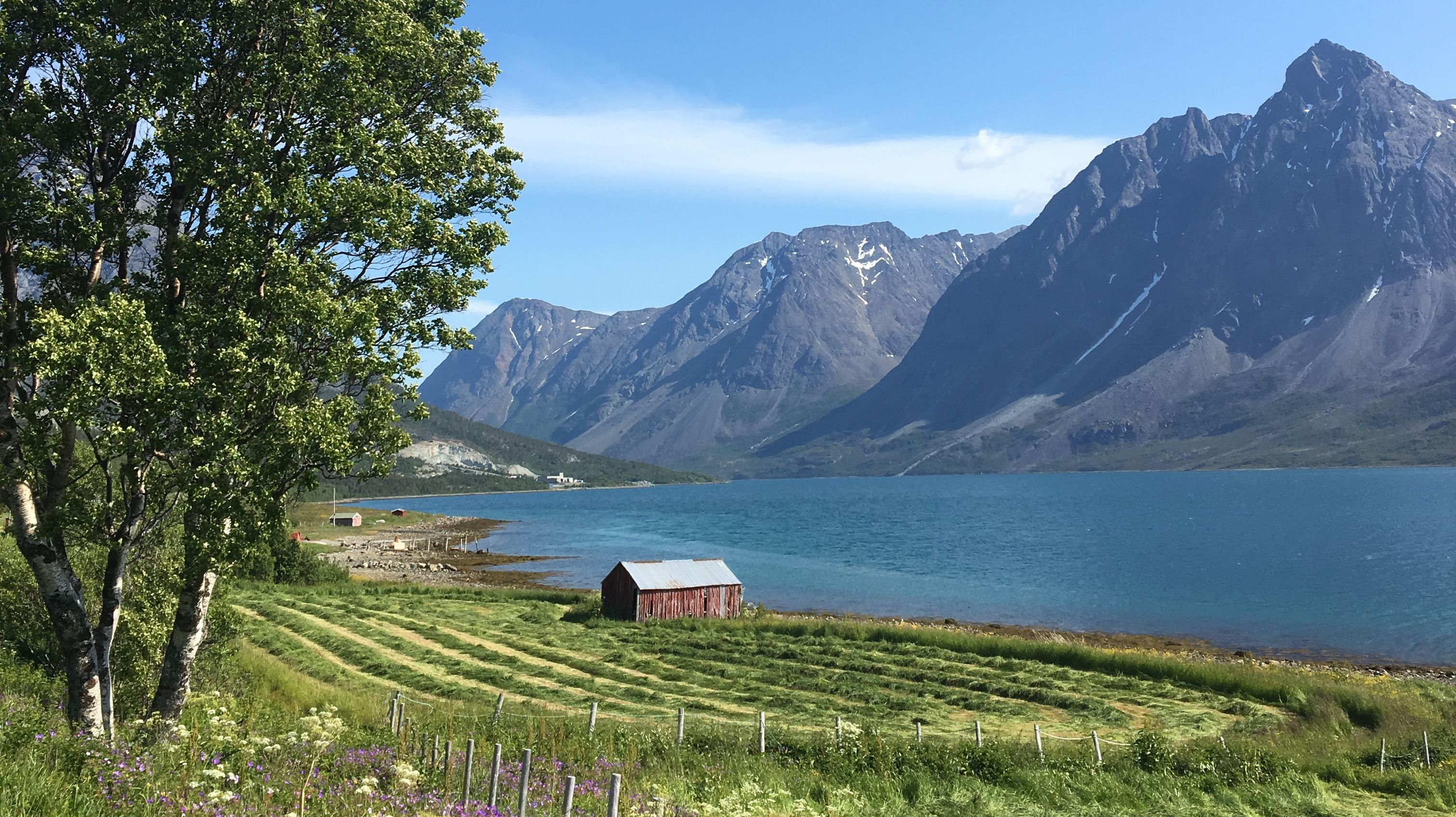 Bauenrhof am Fjord