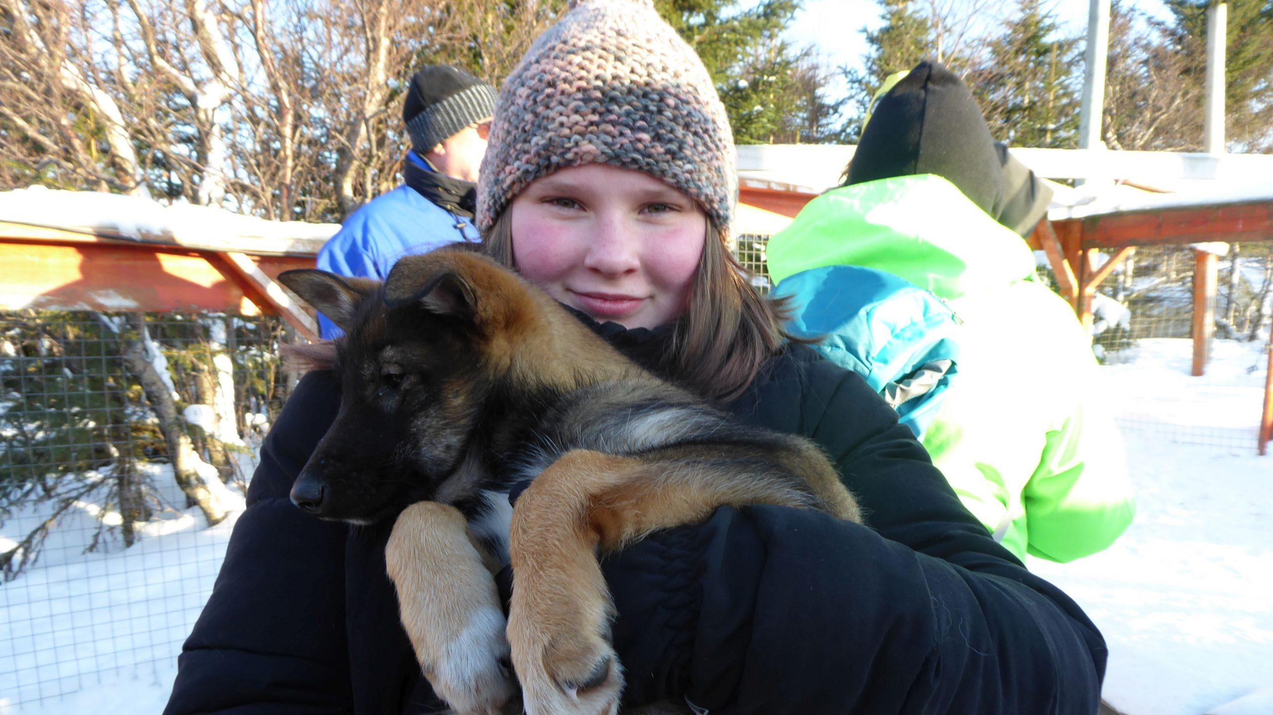 Mädchen mit Husky