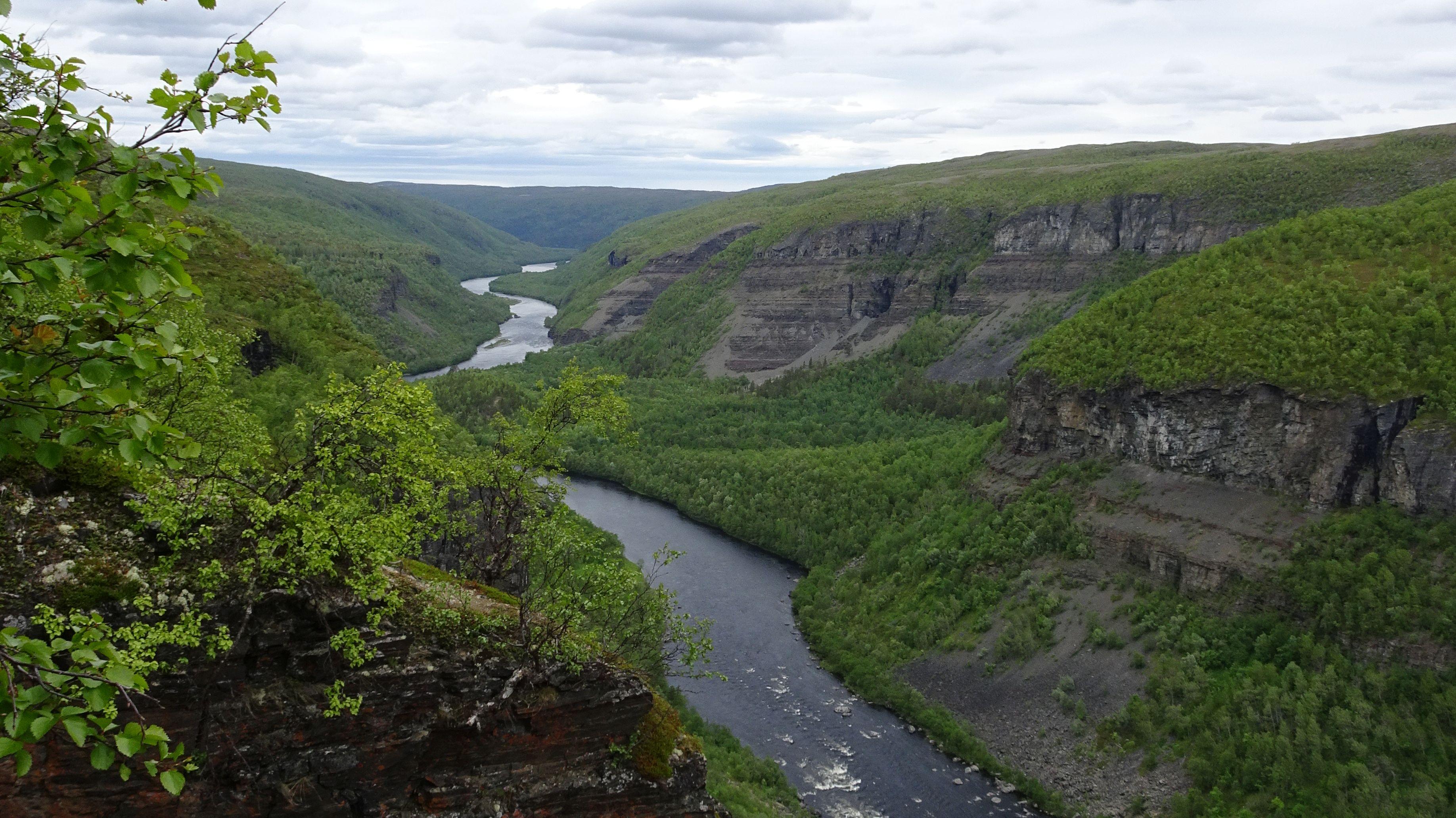 Reisefjord