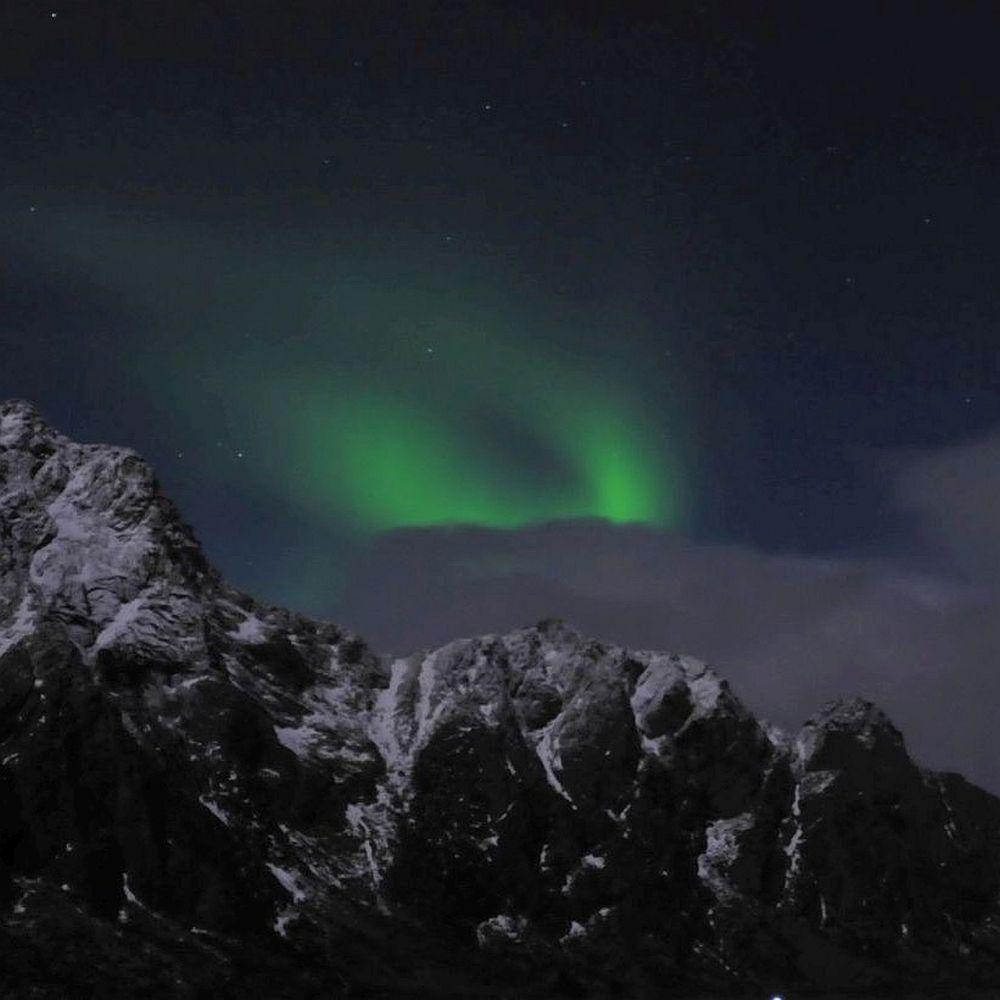 Nordlicht Lofoten