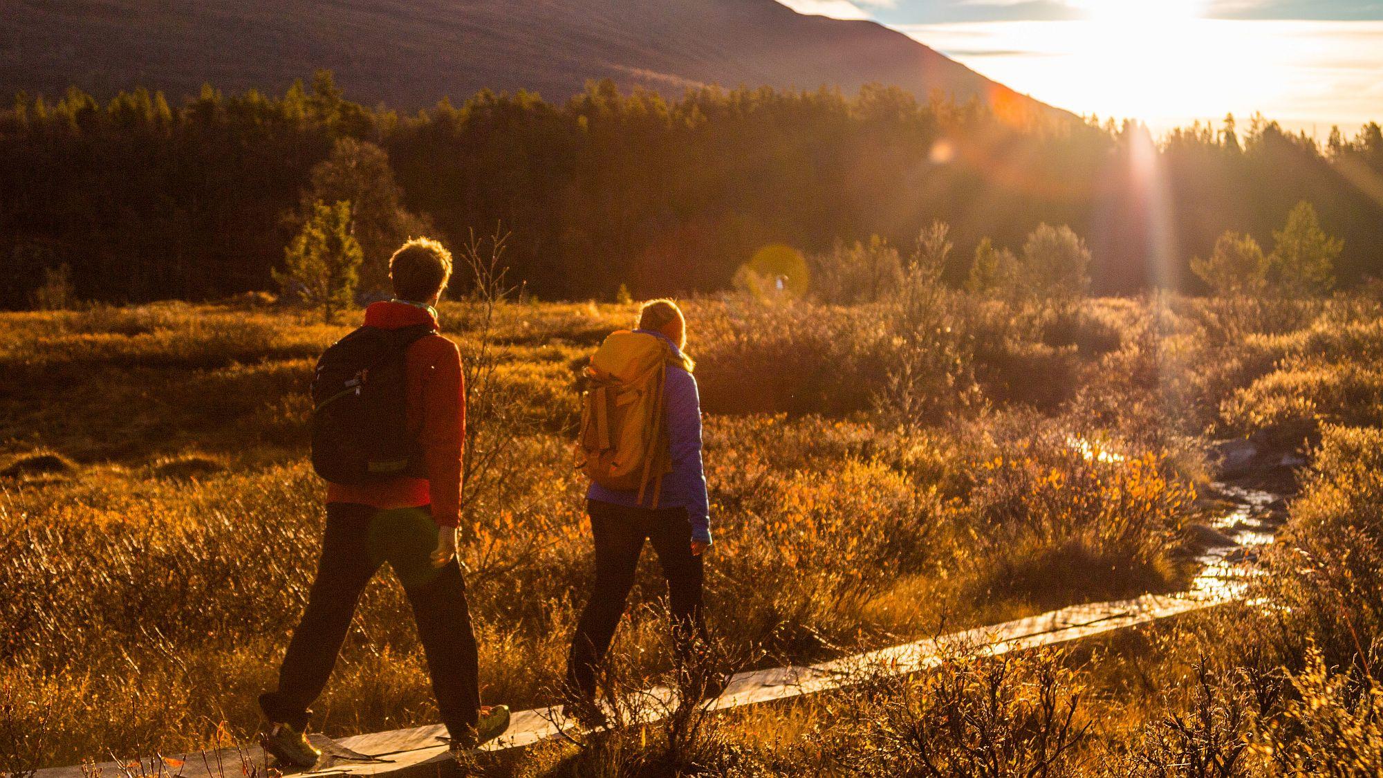 Wandern in der Herbstsonne